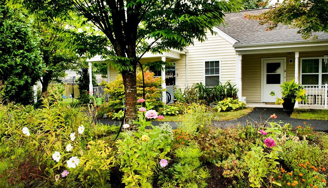 The Treehouse Community in Massachusetts