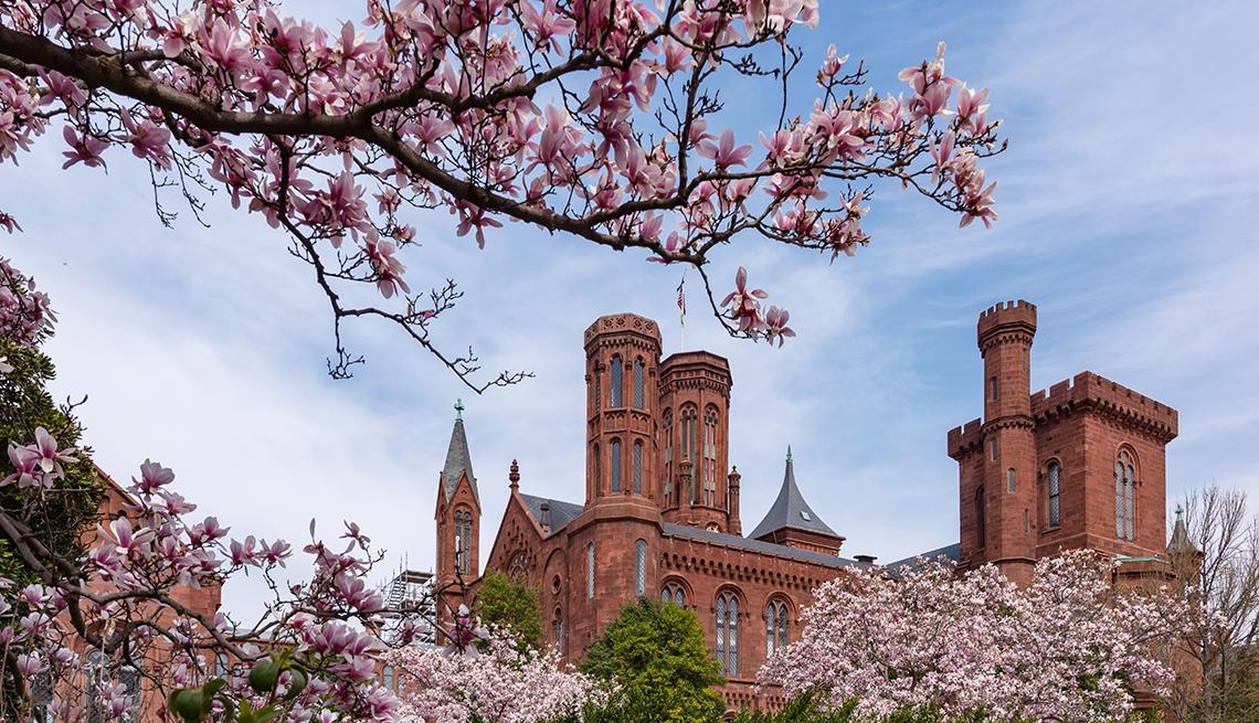 Vista de las torres superiores del castillo Smithsonian en Washington DC.