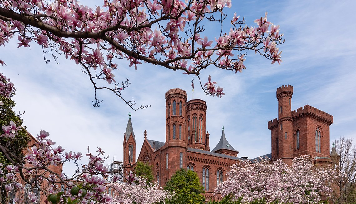 view of the top towers of the smithsonian castle on the national mall in washington d c surrounded by magnolia and cherry trees in bloom
