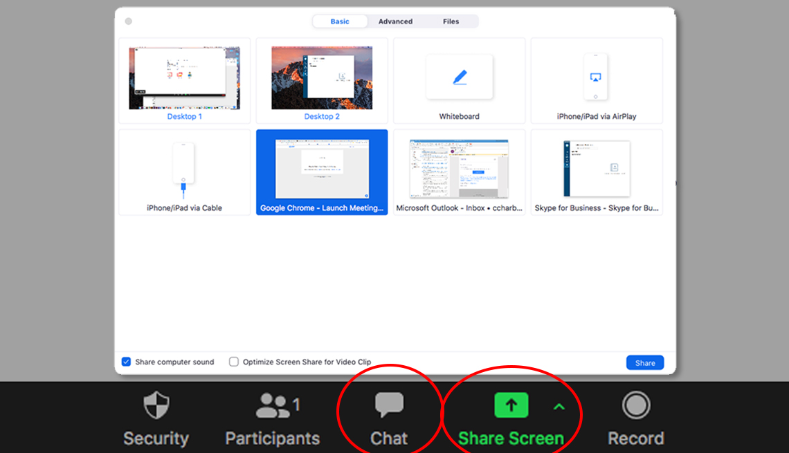 screenshot from zoom meeting showing options for screen sharing with chat and screen share buttons circled in red