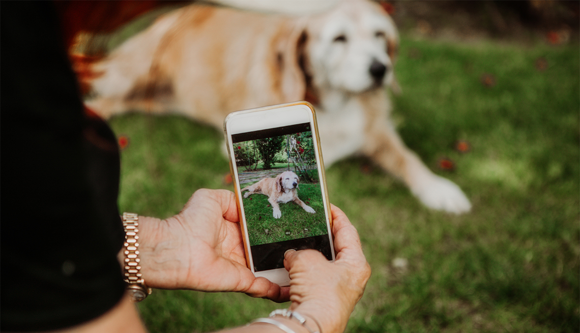 Mujer toma la foto de su perro con un teléfono