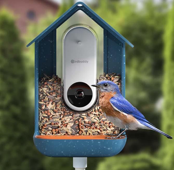 Dispensador digital de comida para pájaros