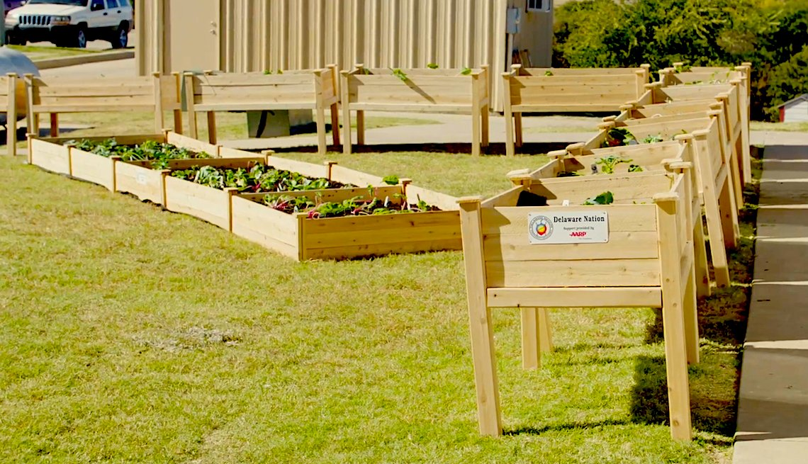 Delaware Nation community garden in Anadarko, Oklahoma