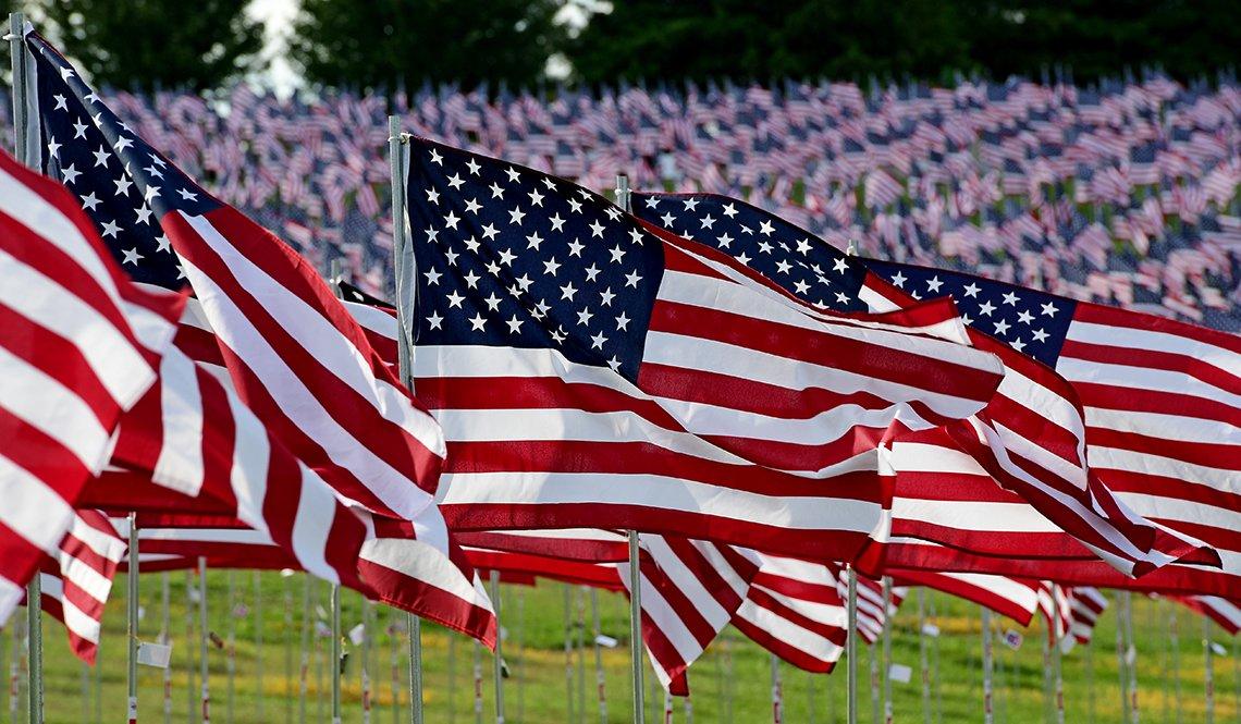 Campo de banderas estadounidenses ondeando.