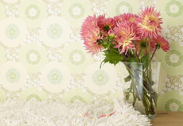 Flores con significado para decorar en ocasiones especiales - Crisantemos