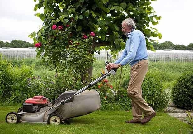 Productos peligrosos en el hogar - Podadora de pasto