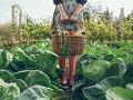 3 consejos para elegir plantas y semillas - Mujer sostiene cesta con vegetales