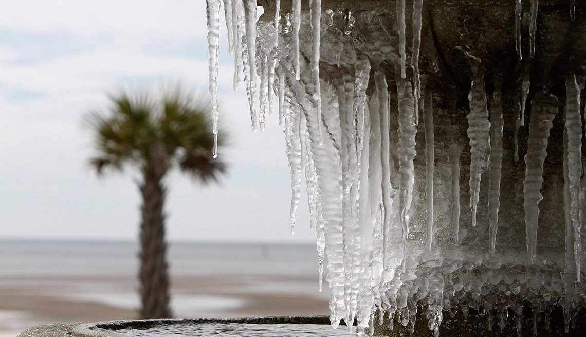 icicles on a fountain with a palm tree in the background