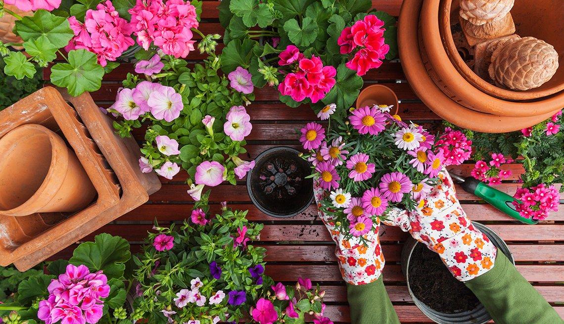 Persona plantando flores en una maceta