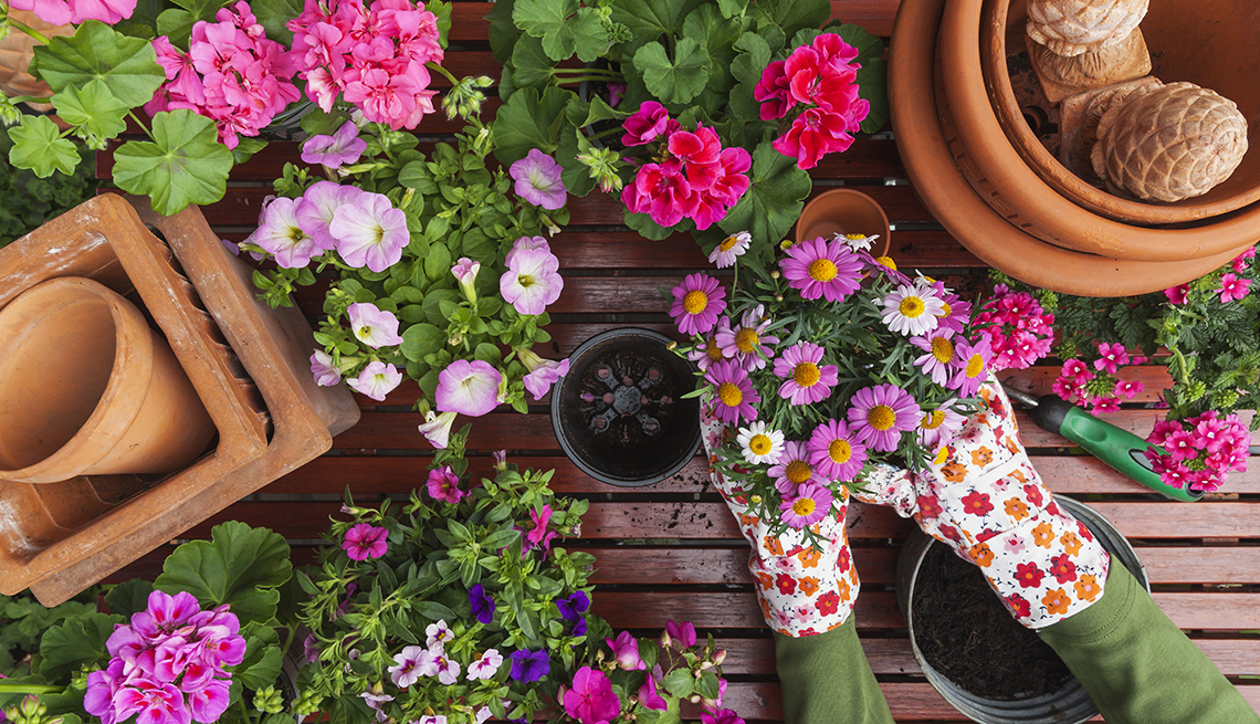 Gardening 101: How to Start Your Own Garden