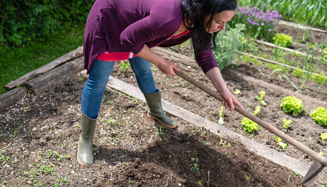 Woman digging vegetable garden beds.