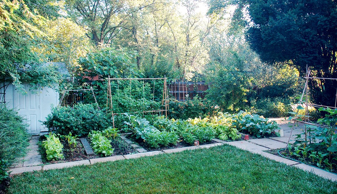 One is her kitchen garden, which she uses to feed or family and share with friends.