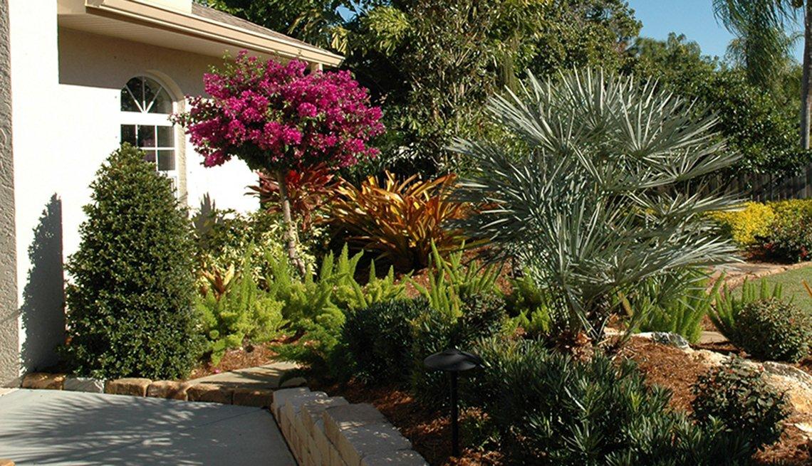 Jardín frondoso en el frente de una casa