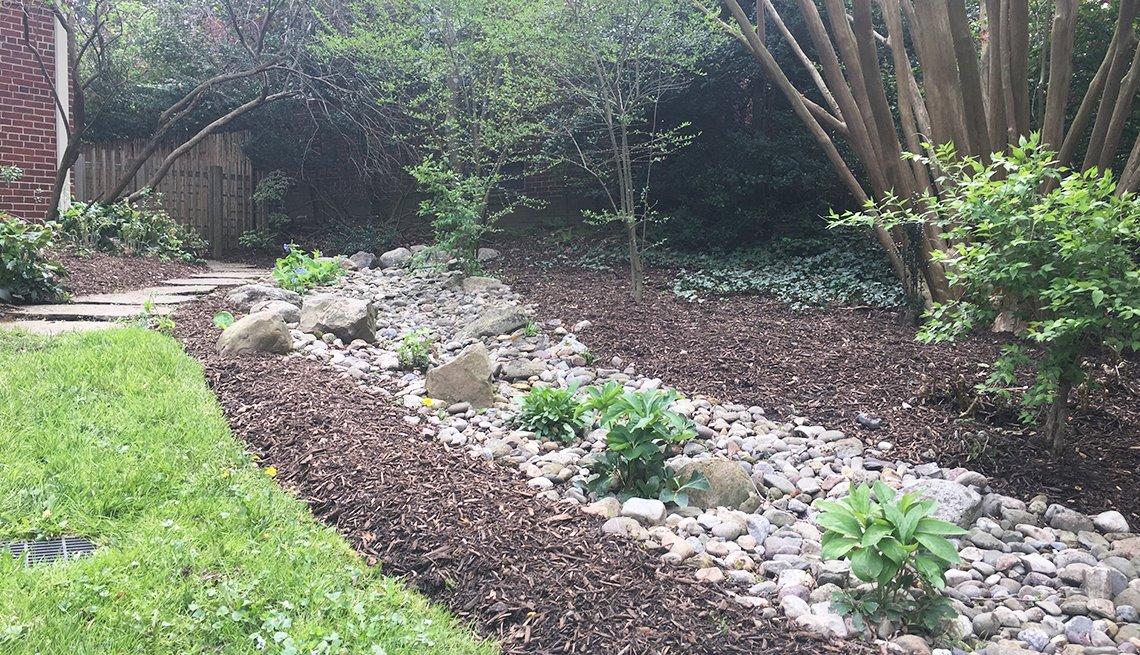 Jardín con plantas de color verde y rocas pequeñas