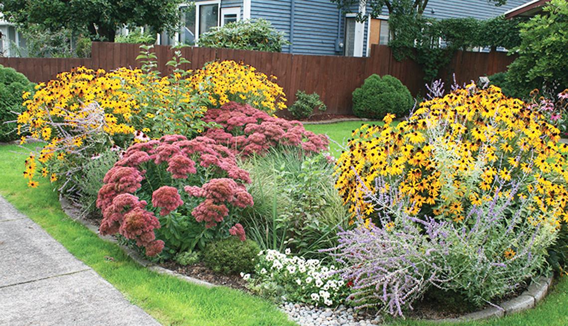 Jardín con flores de color amarillo y rojo