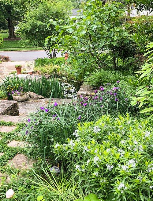 Jardín con plantas y flores
