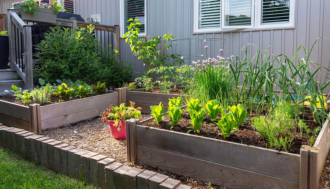item 6 of Gallery image - the backyard of a home with several raised bed gardens with vegetables planted in them
