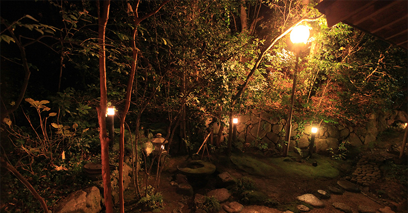 a lit garden and walkway at night