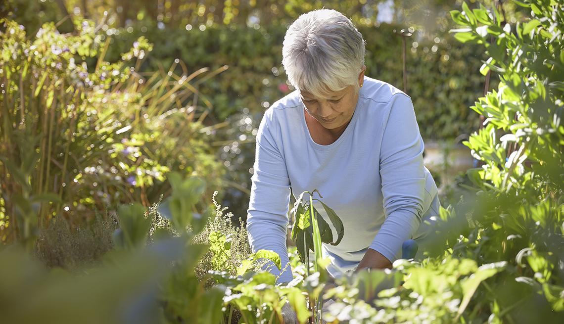 Una mujer trabaja en la jardinería de su patio trasero con guantes