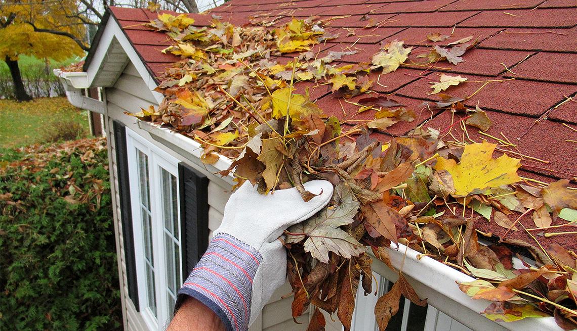 Persona limpia las hojas de una canaleta en el techo de su casa