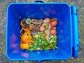 Cáscaras de vegetales y pedazos de comida en un cubo de compostaje de reciclaje.