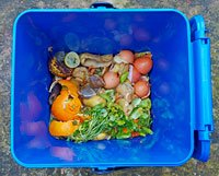 Vegetable peelings and food bits in a recycling compost bin.