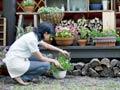 Los secretos de la jardinería interior