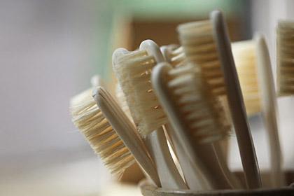 Limpie los gérmenes de su casa: los cepillos de dientes