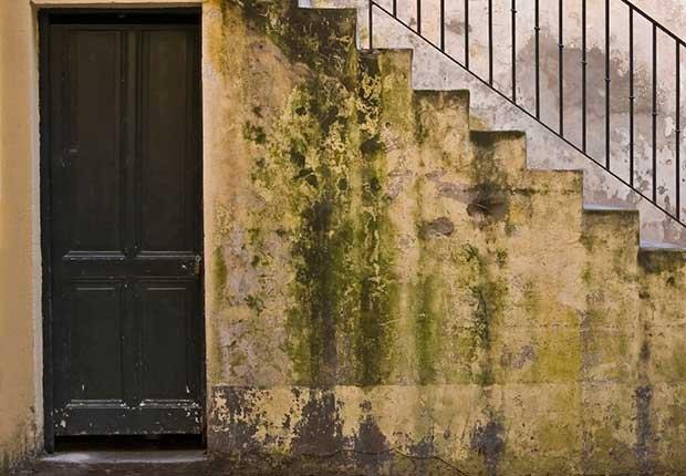 Manchas en la pared - Arreglos de pequeños accidentes de la casa