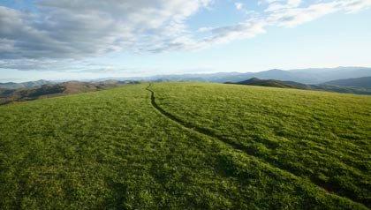 Diez lugares soleados donde jubilarse - Asheville, Carolina del Norte.