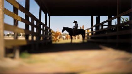 Diez lugares soleados donde jubilarse - Fort Worth, Texas.