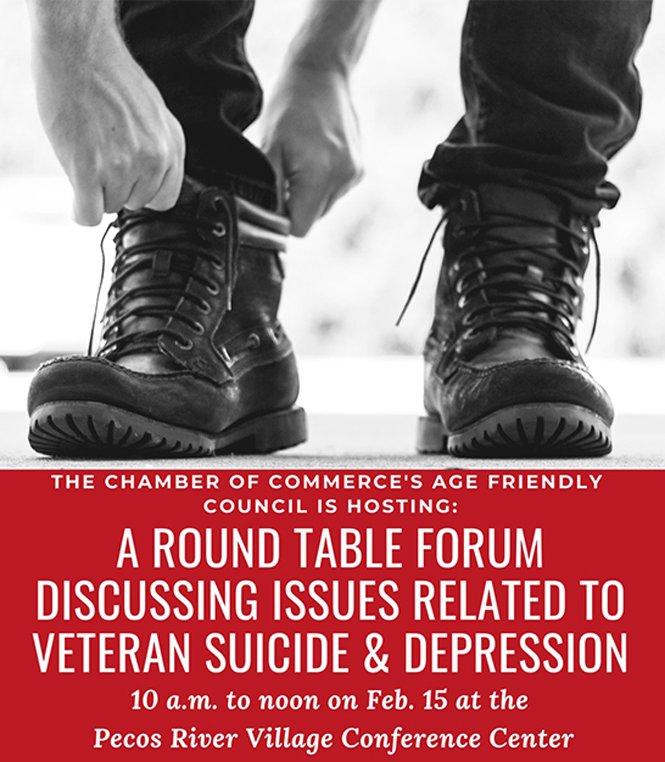Poster Advertises Vet Forum in Carlsbad, NM