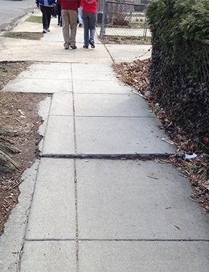 An uneven sidewalk is a walking hazard in Washington, D.C.
