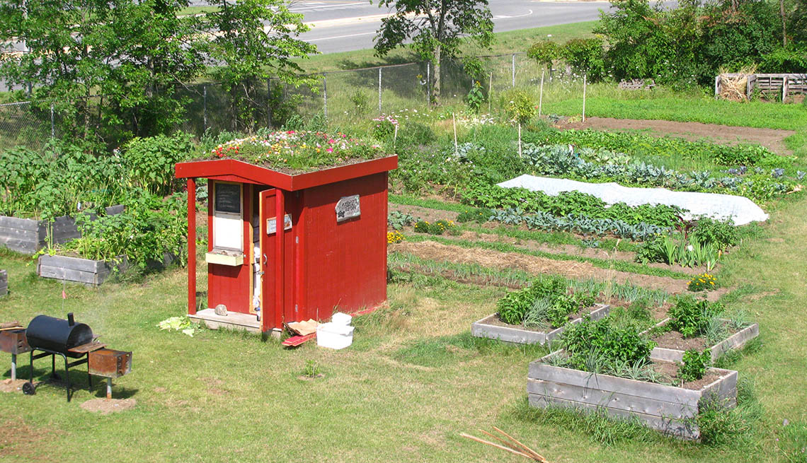 A Nice Community Garden With Red Shed, How To Create And Maintain A Community Garden, Livable Communities