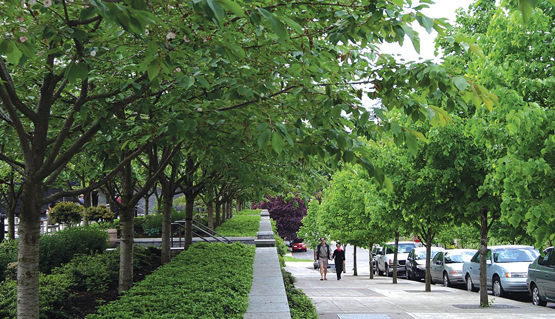 Tree Lined Street, Cars, Sidewalk, Pedestrians, Livability Index, Livable Communities