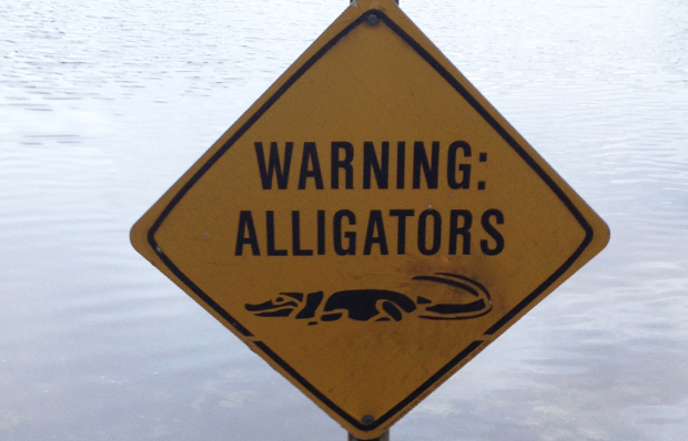 Alligator warning sign