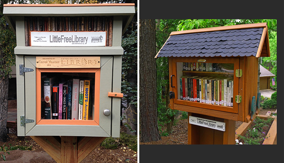 Two house-like Little Free Libraries.