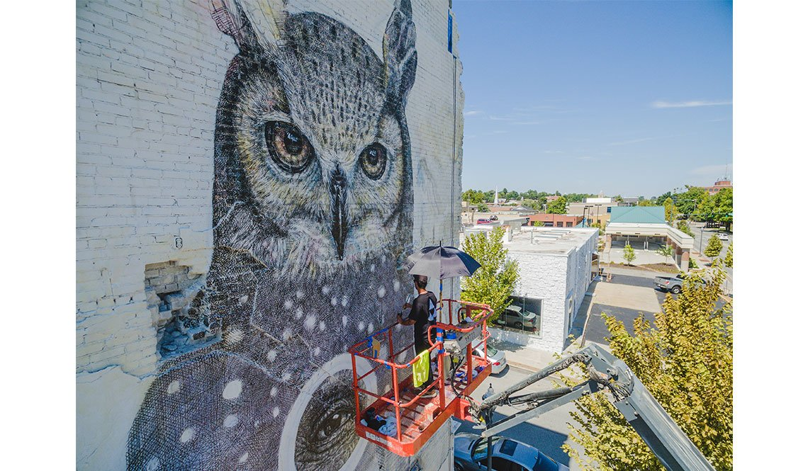 Artist Alexis Diaz paints a mural of an owl on a building wall in Fort Smith, Arkansas