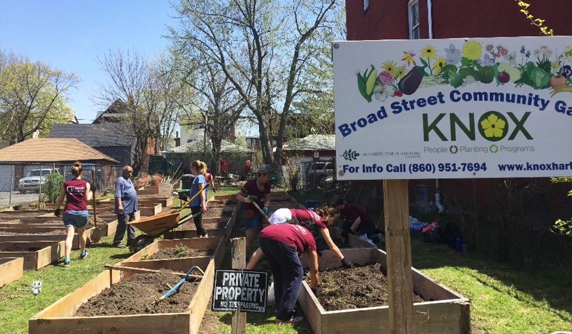 Volunteers set up a community garden