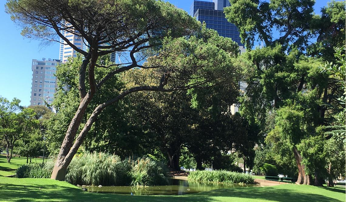 A park in downtown Melbourne, Australia