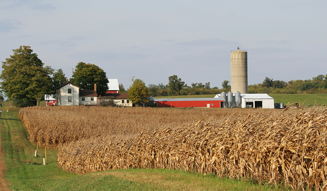Rural farm in Urbana