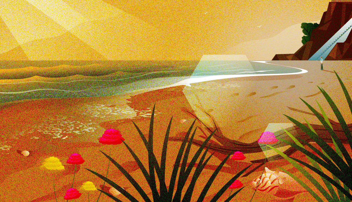 illustration of a sunny beach with plants, shells, and driftwood and a person in the distance
