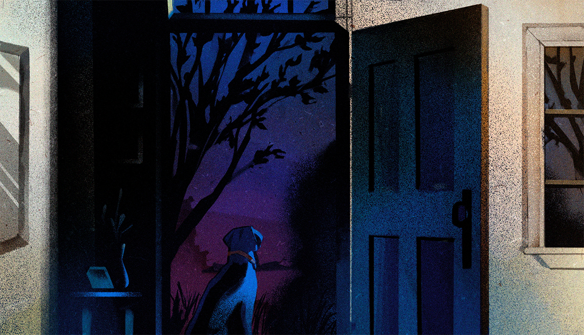 a dog sitting in a doorway, looking outside into a dark garden