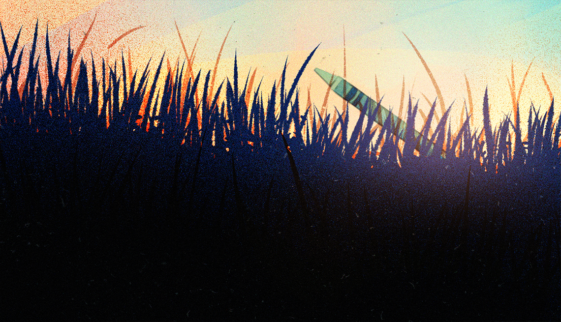 illustration of pale green crayon lying in the grass