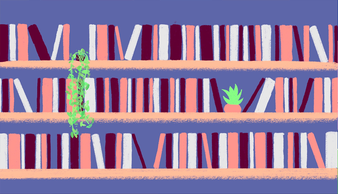 illustration of three bookshelves with two plants