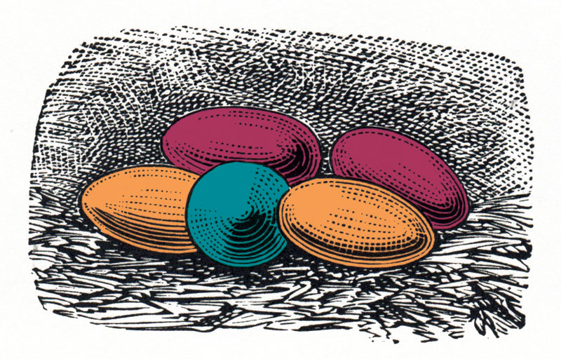 illustration of orange, red and blue eggs on a nest