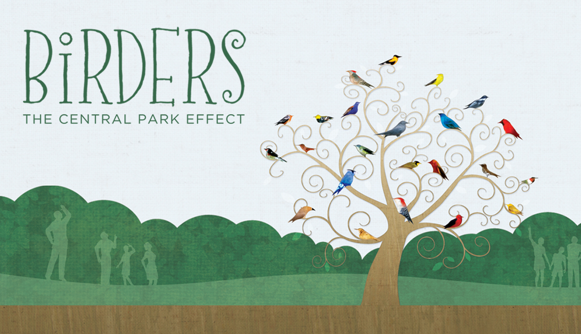 illustrated poster for 'Birders: The Central Park Effect' showing human figure outlines looking at a bare tree filled with colorful birds in a park