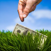 $100 bill in the grass