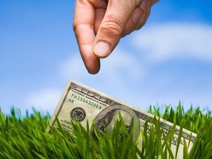 Billete de $100 dólares tirado en el pasto