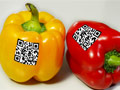 mobile phone apps and social media sites are among the new ways by which discounts reach shoppers, peppers with QR code.
